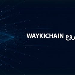 مراجعة شاملة لمشروع Waykichain