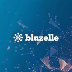 تقديم مشروع Bluzelle