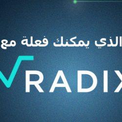 ما الذي يمكنك فعلة مع Radix DLT ؟