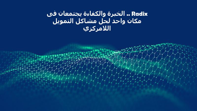 Radix .. الخبرة والكفاءة يجتمعان فى مكان واحد لحل مشاكل التمويل اللامركزي