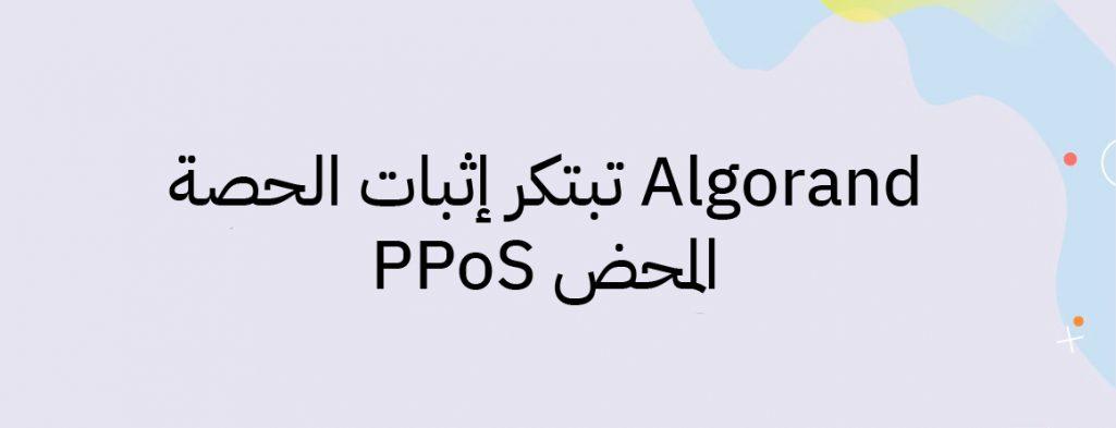 Algorand و إبتكار إثبات الحصة المحض PPos