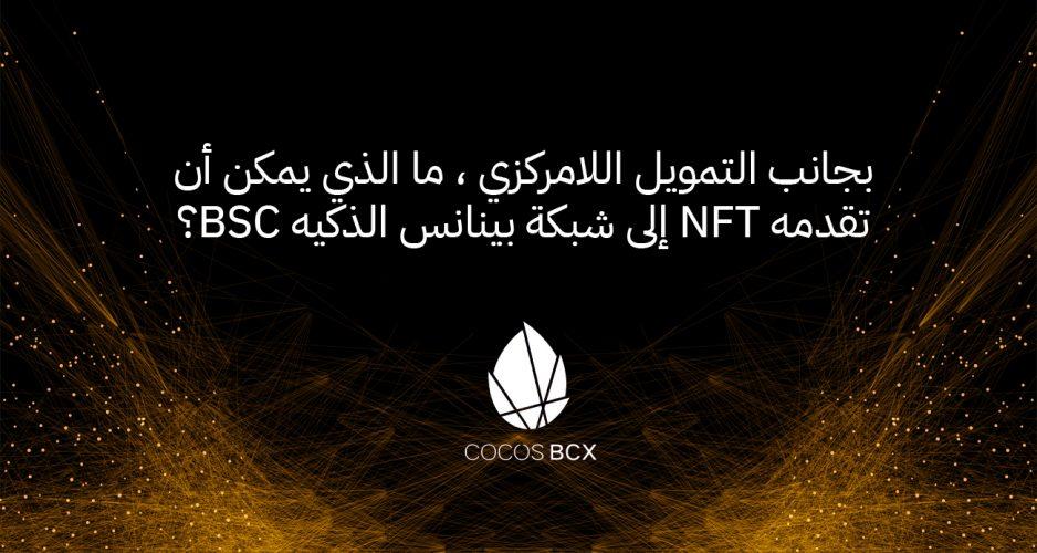 بجانب التمويل اللامركزي ، ما الذي يمكن أن تقدمه NFT إلى شبكة بينانس الذكيه BSC؟