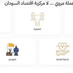 تقديم عملة مروي ... لامركزية الاقتصاد السوداني عبر البلوكتشين
