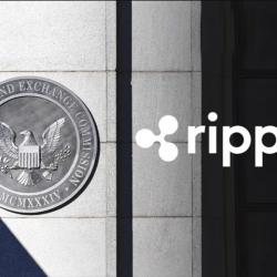 """الرئيس التنفيذي لشركة """"ريبل"""": شركة """"ريبل"""" تريد طرح أسهمها للجمهور بعد تسوية دعوى هيئة الأوراق المالية والبورصات"""